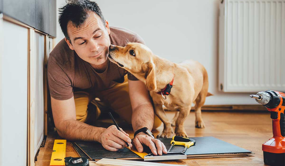 Carpenter working with dog