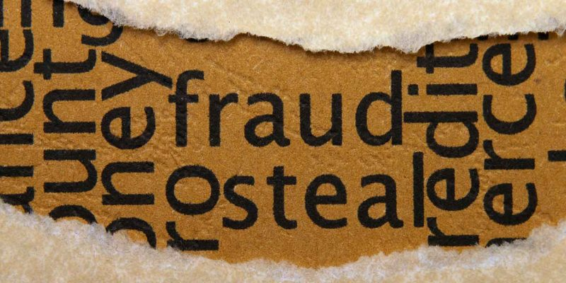 the words fraud and steal